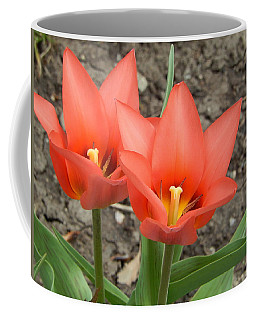 Coffee Mug featuring the photograph A Beautiful Pair by Betty-Anne McDonald