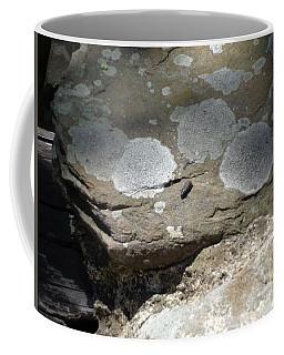 A Bug's World Coffee Mug by Christina Verdgeline
