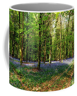 A Carpet Of Colour Coffee Mug by Wendy Wilton