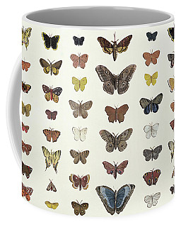 A Collage Of Butterflies And Moths Coffee Mug