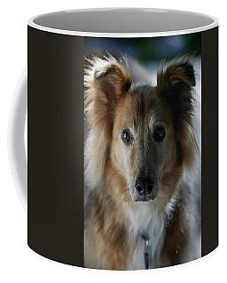A Collie And Golden Retriever Mix Dog Coffee Mug