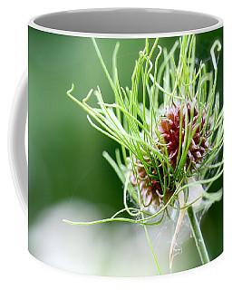 A Crazy Notion Coffee Mug by Tracy Male