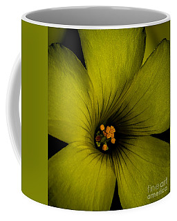 Coffee Mug featuring the photograph A Cup Of Spring by Mitch Shindelbower