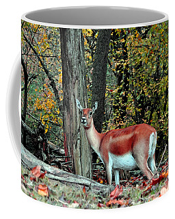A Deer Look Coffee Mug by Lydia Holly