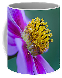 Coffee Mug featuring the photograph A Different Point Of View by Mitch Shindelbower