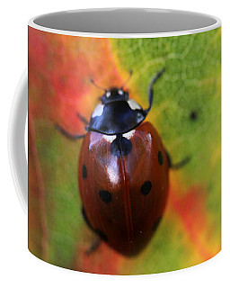 A Fall Walk 4 Coffee Mug