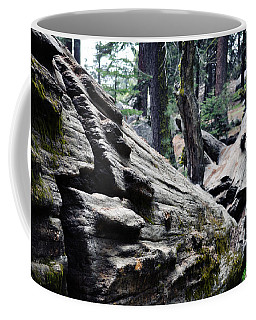 Coffee Mug featuring the photograph A Fallen Giant Sequoia by Kyle Hanson
