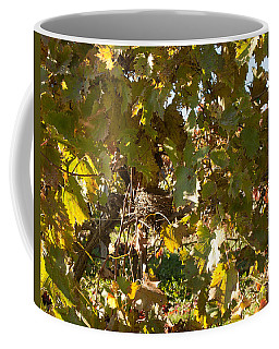 Coffee Mug featuring the photograph A Few Grapes Left For The Birds by Carol Lynn Coronios