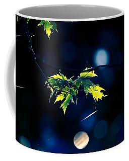 A Few Leaves In The Sun Coffee Mug