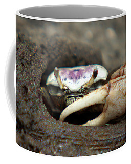 A Fiddler Crab Around Hilton Head Island Coffee Mug