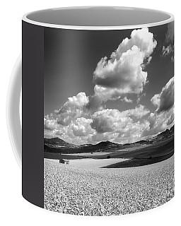 A Field Of Wheat. Limagne. Auvergne. France Coffee Mug