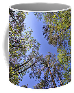A Forest Sky Coffee Mug