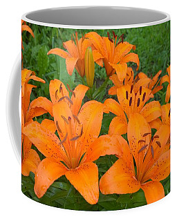 A Garden Full Of Lilies Coffee Mug