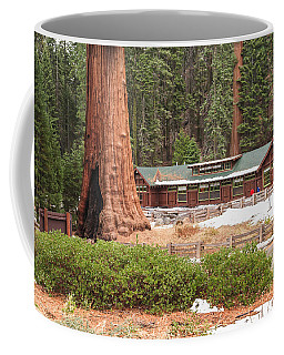 A Giant Among Trees Coffee Mug