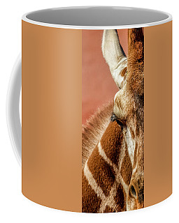 A Giraffe Coffee Mug