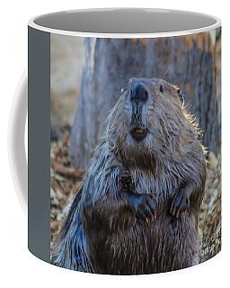 A Good Day To You Sir Coffee Mug by Mitch Shindelbower