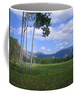 Coffee Mug featuring the photograph A Gorgeous Clearing by Betty-Anne McDonald