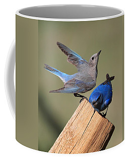 A Great Pair Coffee Mug