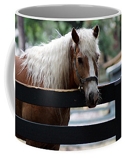 A Hilton Head Island Horse Coffee Mug