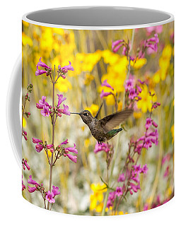 Coffee Mug featuring the photograph A Hummingbird's Paradise by Tam Ryan
