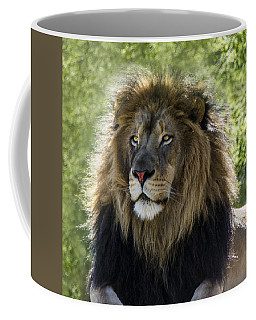 A Lion's Thoughts Coffee Mug