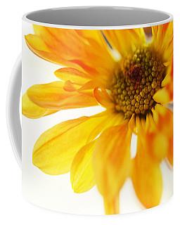 A Little Bit Sun In The Cold Time Coffee Mug