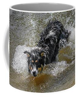 A Mixed Breed Dog Splashes In A Lake Coffee Mug