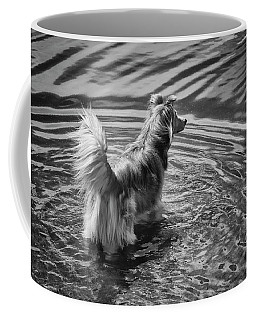 A Mixed Herding Breed Dog Stands Coffee Mug