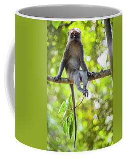 Leaf Monkey Coffee Mugs Fine Art America
