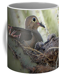 Coffee Mug featuring the photograph A Mothers' Love by Deb Halloran