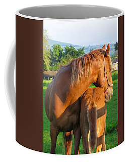 Coffee Mug featuring the photograph A Mother's Love by Suzanne Oesterling