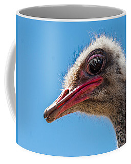 A Mug Only A Mother Could Love. Coffee Mug