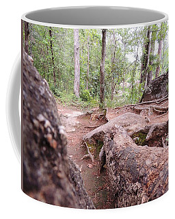 Coffee Mug featuring the photograph A New View From The Woods by Aaron Martens