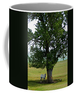A One Horse Tree And Its Horse					 Coffee Mug