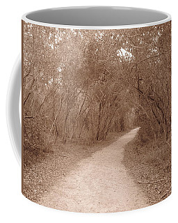 Coffee Mug featuring the photograph A Path In Life by Beth Vincent