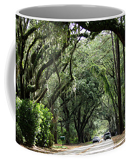 A Pretty Tree Covered Road Somewhere On Hilton Head Island Coffee Mug