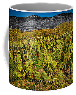 Coffee Mug featuring the photograph A Prickly Pear View by Mark Myhaver