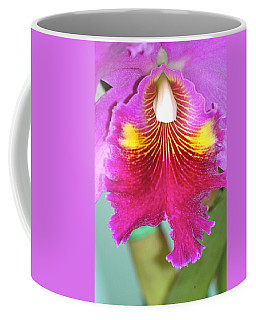 A Purple Cattelaya  Orchid Coffee Mug