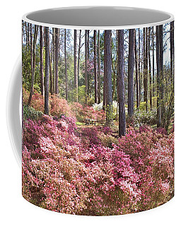 A Quiet Spot In The Woods Coffee Mug