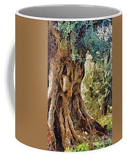 A Really Old Olive Tree Coffee Mug