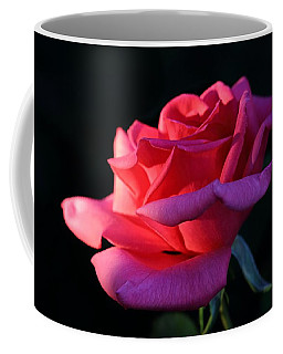 Coffee Mug featuring the photograph A Rose Is A Rose by David Andersen