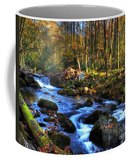 Coffee Mug featuring the photograph A Smoky Mountain Autumn by Mel Steinhauer