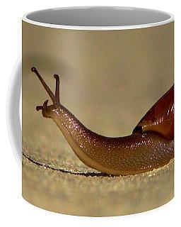 A Snails Pace Coffee Mug
