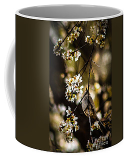 Coffee Mug featuring the photograph A Song For Spring by Mitch Shindelbower