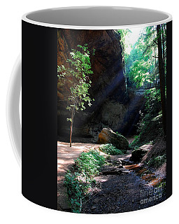 Coffee Mug featuring the photograph A Special Light by Mel Steinhauer