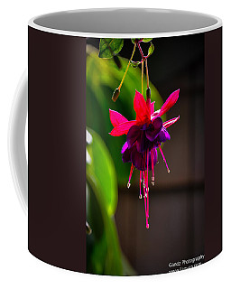 A Special Red Flower  Coffee Mug