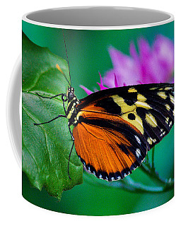 A Splash Of Colour Coffee Mug
