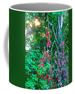 Coffee Mug featuring the photograph A Splash Of Red by Nick Kirby