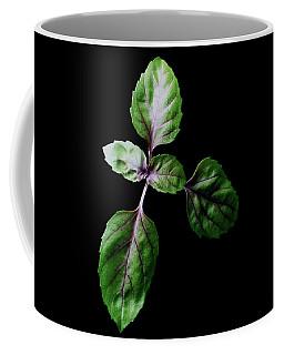A Sprig Of Basil Coffee Mug