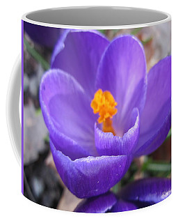 Springjoy Coffee Mug